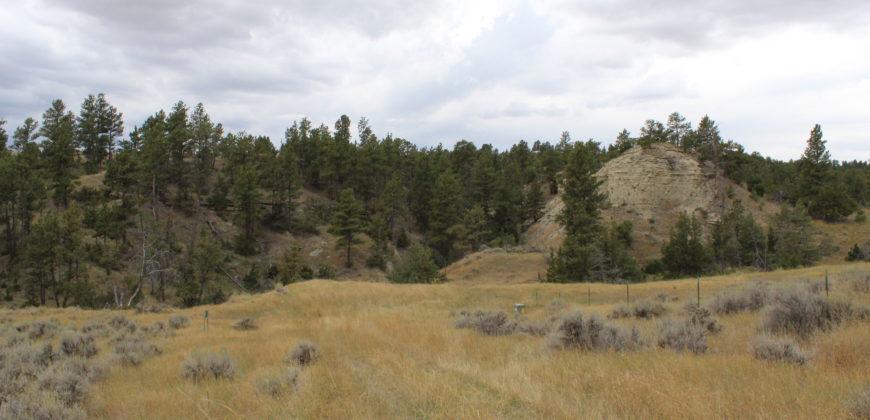Lot 130 Dry Creek Rd