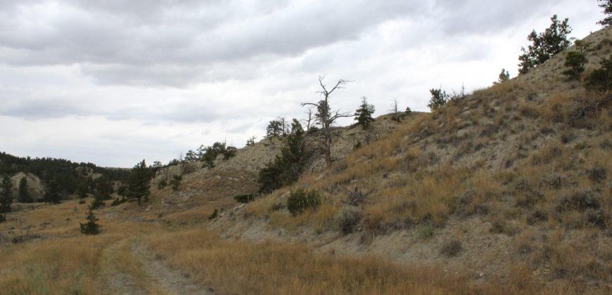 Lot 132 Dry Creek Rd