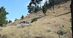 4495 Box Canyon Rd